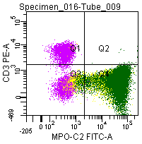Figure 8; Double labeling of a normal blood sample treated with GAS-002, and immunostained for CD3 (PE) and MPO-C2 (FITC).