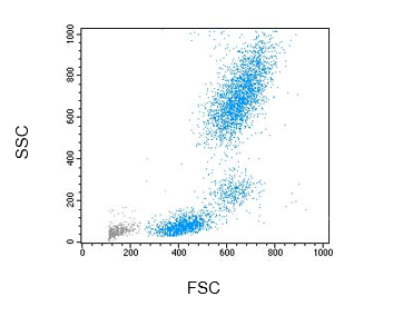 Figure 1 Flow cytometry scatter rofile of peripheral blood leukocytes after lysis of whole blood with NM-LYSE (no-wash method)
